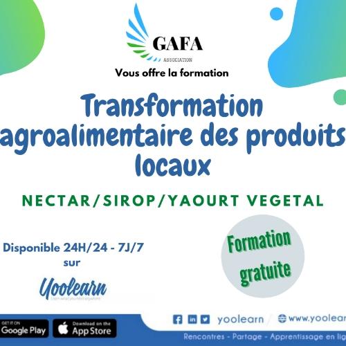 Transformation agroalimentaire des produits locaux: Production de sirop, nectar, boisson lactée et yaourt végétale à base de baobab et maïs